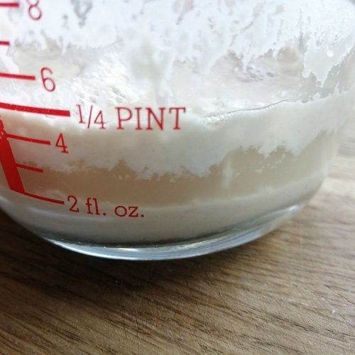 Starter cultures produce carbondioxide bubbles, which make your bread rise.  They also produce alcohol and lactic acid, seen here dissolved in water as clear 'hooch'.  This is normal.