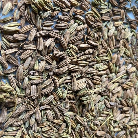 Fennel seed.