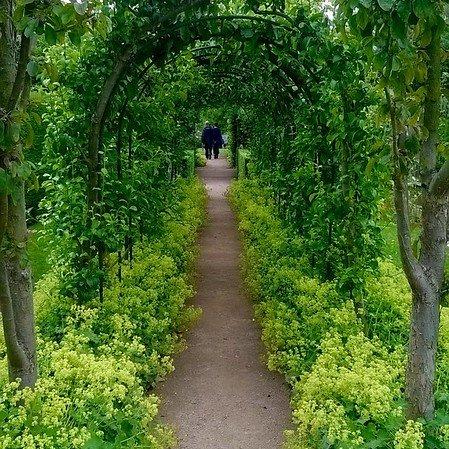 Apple tunnel, Barnsdale Gardens, Rutland.