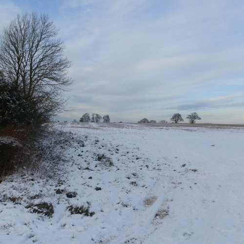 Snowy Leicestershire.