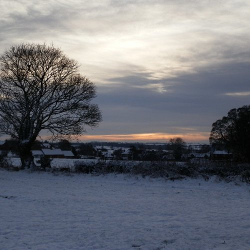 Late afternoon snow, Leicestershire.