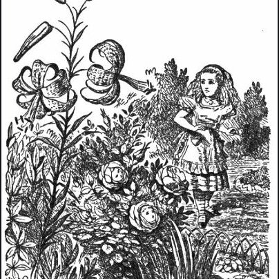 Tenniel's illustration for Alice Through the Looking Glass.